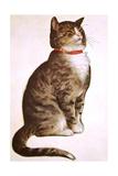 Chester Peake Giclee Print by Charles Bracker
