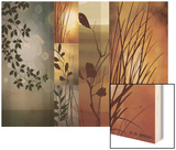 Autumnal Equinox Wood Print by Edward Aparicio