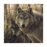 Woodland Companions Posters af Collin Bogle