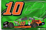 Danica Patrick One-Sided Flag with Car Flag