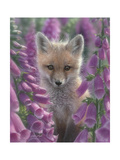 Fox Gloves Posters af Collin Bogle