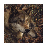 Autumn Wolves Giclee Print by Collin Bogle