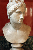 Bust of Aphrodite, Goddess of Beauty and Love Photographic Print