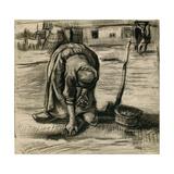 Peasant Woman Planting Potatoes Giclee Print by Vincent van Gogh