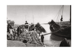 Unloading Cargo from a Boat, Muhaila, Baghdad, Iraq, 1925 Giclee Print by A Kerim