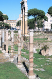 Ruins of the Temple of Castor and Pollux, the Forum, Rome Photographic Print
