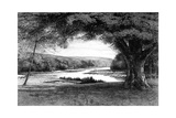 The Vale of Avoca, 1895 Giclee Print by Joseph Francis Walker