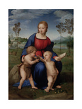Madonna of the Goldfinch (Madonna Del Cardellin), 1505-1506 Impression giclée par  Raphael