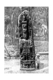A Mystery Monolith in the Primeval Forest of Quirigua, Guatemala, 1922 Giclee Print by Alfred P Maudsley