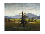 Solitary Tree (Village Landscape in Morning Light), 1822 Giclee Print by Caspar David Friedrich