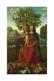 The Virgin and Child with Saint Anne, Ca 1510-1520 Giclee Print by Girolamo dai Libri