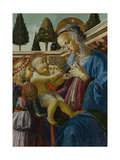 The Virgin and Child with Two Angels, C. 1467-1469 Giclée-tryk af Andrea del Verrocchio