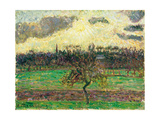 The Meadows at Éragny, Apple Tree, 1894 Giclee Print by Camille Pissarro