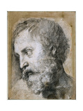 Head of an Apostle (Study for Transfiguratio), 1519-1520 Giclee Print by  Raphael