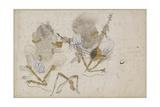 Two Demons, Fettered, 15th Century Wydruk giclee