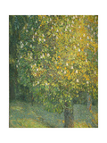 Blooming Chestnut Tree Giclee Print by Alexander Yakovlevich Golovin