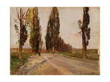Boulevard of Poplars Near Plankenberg, C. 1890 Giclee Print by Emil Jakob Schindler