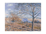 Banks of the Loing - Autumn Effect, 1881 Giclee Print by Alfred Sisley