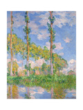 Poplars in the Sun, 1891 Giclee Print by Claude Monet