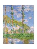 Poplars in the Sun, 1891 Giclee Print