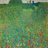 Poppy Field, 1907 Giclée-tryk af Gustav Klimt