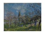 Orchard in Spring, By, 1881 Giclee Print by Alfred Sisley