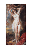 Perseus Freeing Andromeda, 1638 Giclee Print by Pieter Paul Rubens