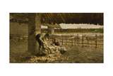 The Sheepshearing, 1883-1884 Giclee Print by Giovanni Segantini