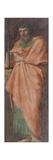 Saint Paul, 1604-1607 Giclée-tryk af Annibale Carracci