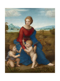Madonna in the Meadow, Ca 1506 Impression giclée par  Raphael
