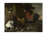 A Cock, Hens and Chicks, Ca 1668-1670 Giclee Print by Melchior de Hondecoeter