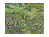 Long Grass with Butterflies, 1890 Giclee Print by Vincent van Gogh