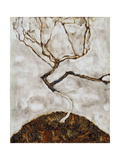 Small Tree in Late Autumn, 1911 Giclee Print by Egon Schiele