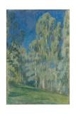 Birches at Midday, 1903 Giclee Print by Viktor Elpidiforovich Borisov-musatov