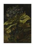 Cineraria, 1886 Giclee Print by Vincent van Gogh