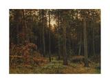 Pinewood, 1885 Giclee Print by Ivan Ivanovich Shishkin