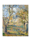 Vegetable Garden, 1878 Giclee Print by Camille Pissarro