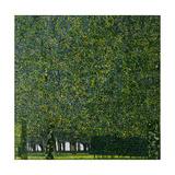 The Park, C. 1910 Giclée-Druck von Gustav Klimt