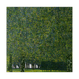 The Park, C. 1910 Giclee Print by Gustav Klimt