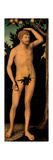 Adam, after 1537 Giclee Print by Lucas Cranach the Elder