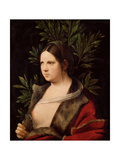 Young Woman, 1506 Giclee Print by  Giorgione