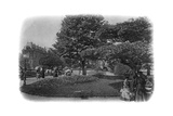 Gardens of the Hotel De Ville, Le Havre, Normandy, France, Early 20th Century Giclee Print