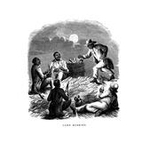 Corn Husking, Negro Labourers Husking Maize, Southern USA, C1850 Giclee Print