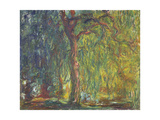Weeping Willow Giclee Print by Claude Monet