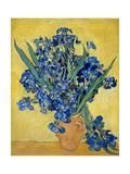 Irises, 1890 Giclee Print by Vincent van Gogh
