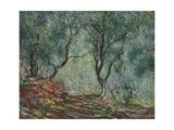 Bois D'Oliviers Au Jardin Moreno, 1884 Giclée-Druck von Claude Monet