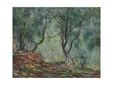 Bois D'Oliviers Au Jardin Moreno, 1884 Giclee Print by Claude Monet