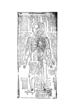 Acupuncture Chart for the Front of the Body, Japanese, 19th Century Giclee Print