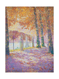 Brussels Park Giclee Print by Franz Gailliard