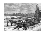 Canadian Loggers, 19th Century Giclee Print by  Taylor